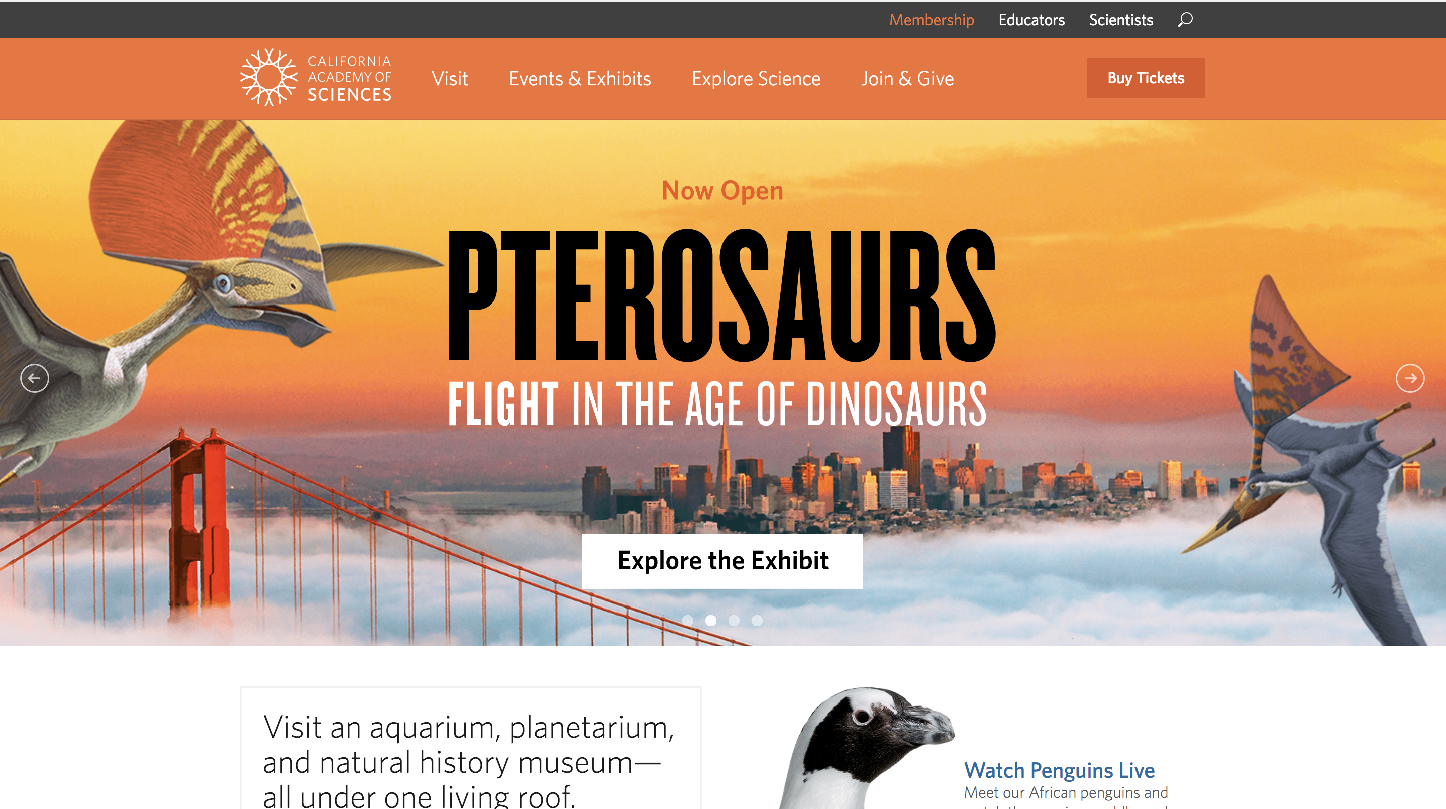California Academy of Sciences Website